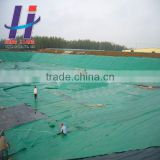 Hot sales of water proof material fish equipment fish farm swimming pool shrimp farm HDPE geomembrane
