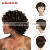 light brown Afro Short Curly Synthetic Wig, Short Hair Wig, Rainbow Wig                                                                         Quality Choice