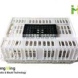 Chicken Cage for live poultry farming