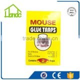 Mouse Glue Trap HD037115