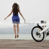 Seagull GL -500W sport e-cycle li ion battery/ mountain electric bike/ strong aluminum frame / safe design