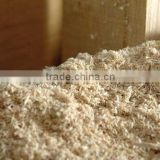 Mixed sawdust/ Pine sawdust for cattle