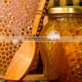 Filtered Honey Honey Comb