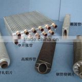 Stainless steel Finned Heating Pipe