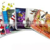 Wholesale price a4 3d plush spiral school notebook