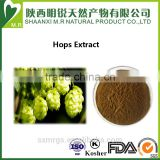 100% natural China herb hops extract powder/humulus lupulus extract