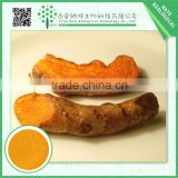 Hot China products wholesale herbal extract curcumin 95%
