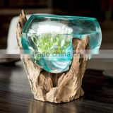 Glass Bowl Root Vase