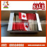 Supply Food Advertising Flag Each country Toothpicks Flag