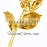 24kt Gold Plated Natural Rose Bud