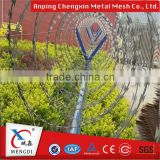 Wholesale Razor Barbed Wire / Galvanized Razor Barbed Wire /Razor Barbed Wire Fencing (Factory)