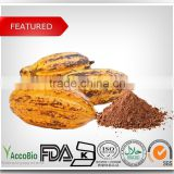 100% Natural Cocoa extract, Theobromine powder, Theobromine 10% 20%                                                                         Quality Choice