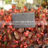 Beautiful garden decoration for various kinds of flowers black slate stone plant tag