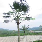 wholesale decorative led coconut palm tree light