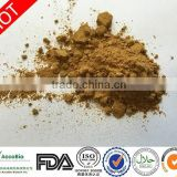 Best Quality Tribulus Terrestris, natural tribulus terrestris extract,