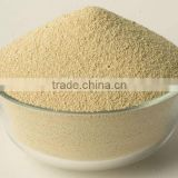 INQUIRY about Soybean Meal