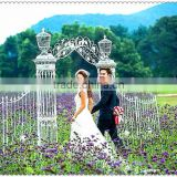 New arrival artificial flowers wedding backdrop door decoration large stage backdrop