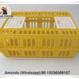 Myanmar Hot Sale Cheap Price Chicken Transport Coop & Cage Crate/Box for Hatching Eggs & Plastic Transport Cage for Live Chicken for Wholesale & Plastic Carriage Cage