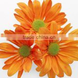 100% Natural Chrysanthemum extract powder /Flavone/ Chrysanthemin