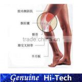 original manufacturer suppiled high quality knee injection non cross linked Hyaluronic acid filler