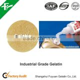 Gelatin in granular with packing 50kg / bag used in industrial chemicals as a binder