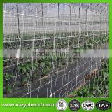 plant climbing crop hanging net for agriculture