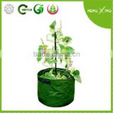 2016 PE mini patio planter plastic grow bags