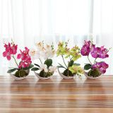 Creative Decoration Artificial Plants 3 Branches Silk Orchid Pot