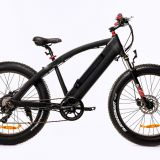 MS11 Mountain E-bike