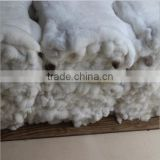 customize size dressed rex rabbit skin fur plate for garment