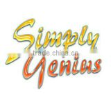Shenzhen Simplygenius Electronic Technology Co., Ltd.