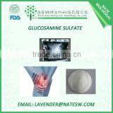 Factory NATE Supply Glucosamine Sulfate 2 KCL (CAS No.:31284-96-5 )