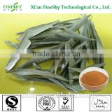 Halal certified Olive Leaf Extract (Oleuropein), Olive Leaf Extract Powder (Oleuropein), Olive Leaf Powder Extract (Oleuropein)