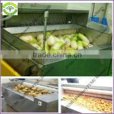 practial & affortable 3T/H brush model vegetable and fruit washing and peeling machine