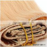 Wholesale Triple Quad Weft Double Drawn Grade 7A Indian Virgin Remy Hair Clip in Human Hair Extension