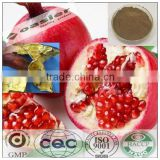 Natural manufacturer supply GMP Pomegranate peel extract