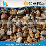 frozen blue mussels meat price
