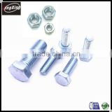 Hex head galvanized bolt and nut