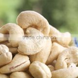 promotion of goa organic cashew nut selling from China fried raw lp lsp ww 320