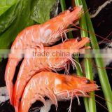 New Arrival IQF frozen seafood Cooked vannamei shrimp