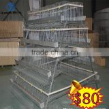 poultry chickens farms building for sale