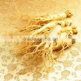Chinese well-know herb Pure Natural RADIX GINSENG Oil, Ginseng essential oil