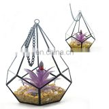 terrarium geometric glass terrarium wholesale drop shape