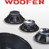 Hot sale 15 inch woofer Woofer Speakers