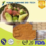 GMP Factory Supply Organic Tannic Acid Food Grade 97%