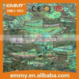 Chinese AAA quality green abalone shell paper/sheet