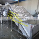 shrimp grading machine/automatic Prawn grader
