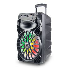 Privated Moulded Portable Trolley Speaker 12'' BK-129