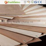 8x4 3mm 4mm Thickness Hardwood Plywood Sheet
