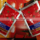 double concentrated China tomato paste in sachet pouch l79 alavie 100g 50g 70g 40g 100g factory 28%-30%
